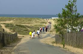 des promeneurs traversent les dunes pour rejoindre la mère