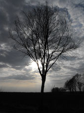 Dezember Sturm