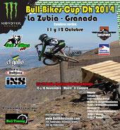 BULL BIKES CUP DH ZUBIA
