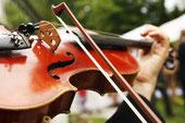 Geiger / Violinist: Streicher - Konzert