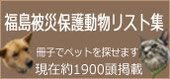 福島被災保護動物リスト集