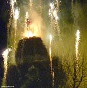 Novoli 2011