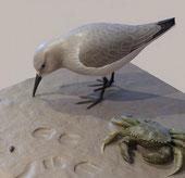 Sculptures en Muséographie et interprétation, scénographie, naturalisme, sculptures animalières et naturalistes
