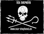 Zum Schutz der Meerestiere und Meere