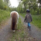Ponytrekking, Wandern am Rothaarsteig