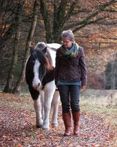 Pferd Freiarbeit Spaziergang Harmonie