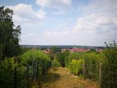 Panoramarundweg Bad Belzig