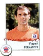 N° 555 - Vincent FERNANDEZ (1996-98, PSG > 2010-11, Chateauroux)