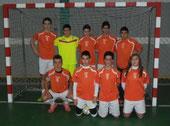 Subcampeón Liga Provincial 2012/2013