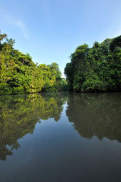 Parque Nacional Tortuguero