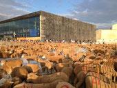 Marseille en Transhumance