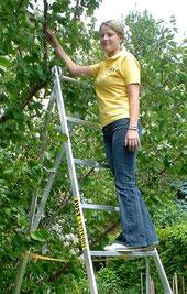 59-325 Agricultural Ladder