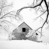 shelter / vorbigoh