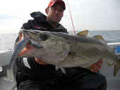 pêche, lieu, brest, douarnenez, ultimate fishing,