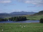 Near Pitlochry