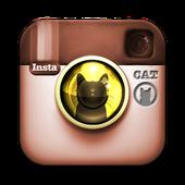 instagramangkorbengals
