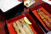 Grilled eel,plain grilled eel and rice in lacquered box