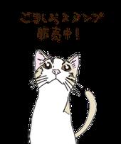 セサミアンドソルトの看板猫、ごま&しおのスタンプの画像