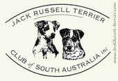 Jack Russell Terrier_Club of South Australia