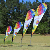 ColorWing Petal Teardrop flag