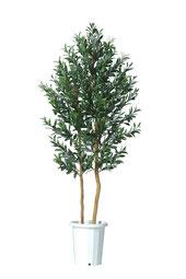 人工樹木オリーブ実付きH1800