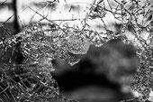 Krav Maga: Retzev ou mouvement continu