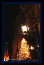 Hannover Altstadt Weihnachtstanne Marktkirche