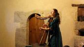 Conte Wezen harpe celtique