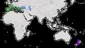 Karte zur Verbreitung der Zaunammer (Emberiza cirlus) weltweit.