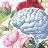 5 Things You Shouldn't Do When Trying to Boost Brain Health–and 5 Things You Should