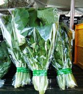 大和真菜が始まりました。