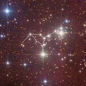 NGC 6910 Giraffe