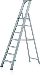 73-007 Platform Ladder