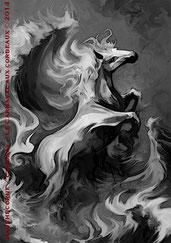Le Carnaval aux corbeaux - Illustration 02 - Bäckahäst, le pâle destrier du Schimmelreiter