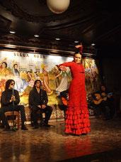 залы фламенко, театры фламенко, рестораны и бары фламенко