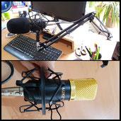 AUKEY Kondensatormikrofon Set Studio Mikrofon mit Popschutz und Ständer, Kugel-Typ Anti-wind Schaum Kappe, geeignet für Professionell Studio Rundfunk & Aufnahme