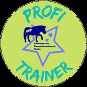 Zertifizierter KKP-Profi-Trainer: DAS Konzentrationstraining mit Pferd!