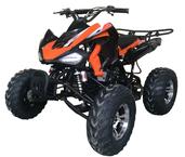 CLICK HERE FOR UT-150cc SPORT CATALOG