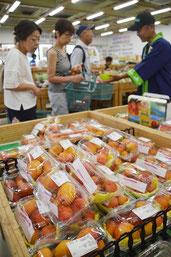 マンゴーフェアが日までの3日間の日程で始まった=14日、JAファーマーズマーケットゆらてぃく市場