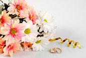 Fotos bodas