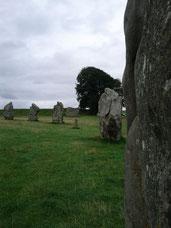 Steinkreis in Avebury