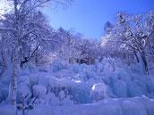 芸術的な氷のアート