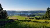 Blick auf den Rottachspeicher See