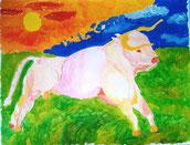 Weißer Stier