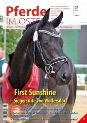 Calea – Siegerstute der springbetonten Stuten beim Stutenchampionat des Pferdezuchtverbandes Brandenburg-Anhalt Foto: bb