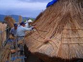下の竹を探す