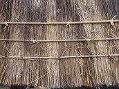 竹の結び目 千鳥に結ぶ