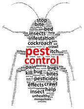 Schädlingsbekämpfung / pest control