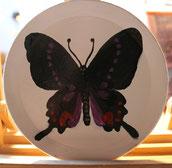 Farfalla - acrilici su piattino in legno