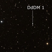 DdDM 1